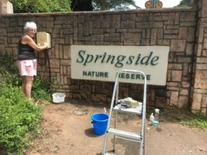 Conservancy Community Project: Sat a.m. work parties, Springside Nature Reserve